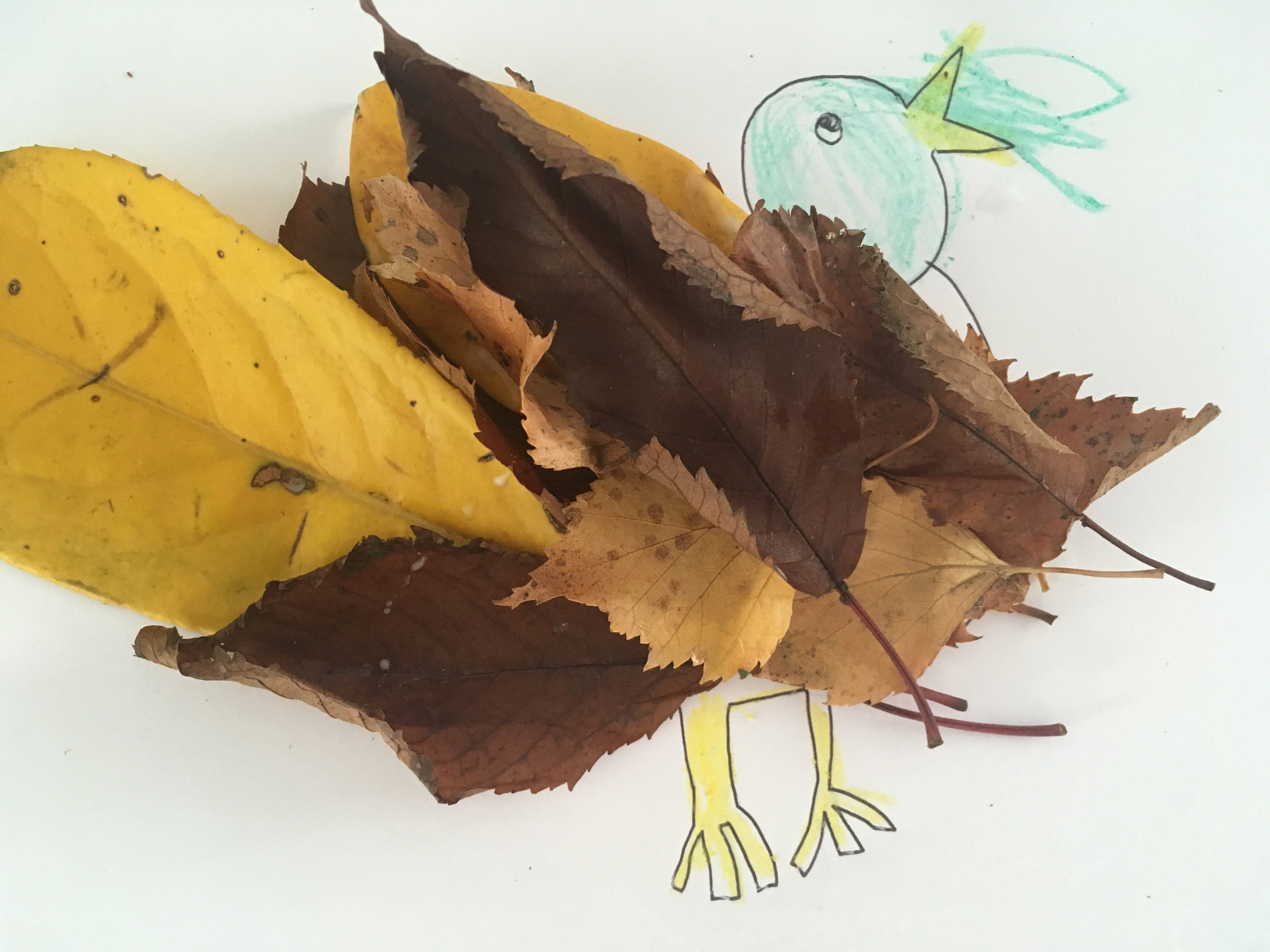 The Benefits To Children Of Autumn Crafts Special
